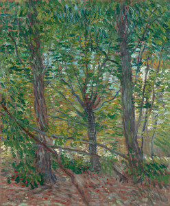 Art Prints of Trees, 1887 by Vincent Van Gogh