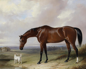 A Bay Hunter and a Terrier in a Landscape by William Barraud | Fine Art Print