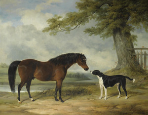 Art Prints of A Pony and a Dog by William Barraud