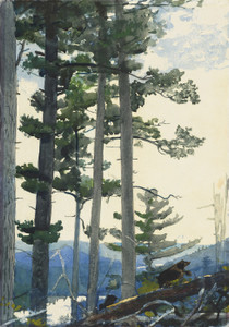Art Prints of Old Settlers by Winslow Homer