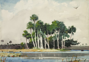 Art Prints of The Turkey Buzzard by Winslow Homer