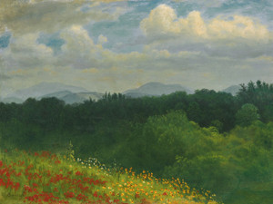 Art Prints of A Field of Red and Yellow Wildflowers by Albert Bierstadt