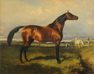 Art Prints of Wild Horses by Alfred de Dreux