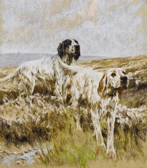 Art Prints of Scent on the Breeze by Arthur Wardle