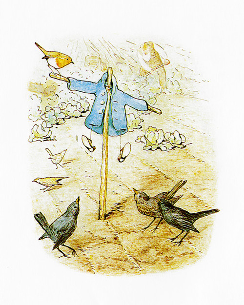 Art Prints of Scarecrow and Blackbirds by Beatrix Potter