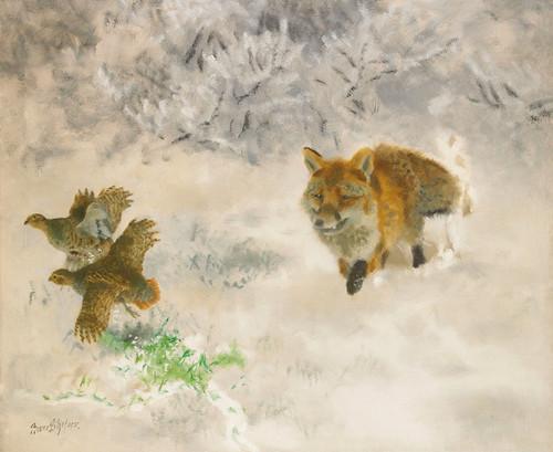 Art Prints of Fox Hunting Black Grouse Hens in Winter Landscape by Bruno Liljefors