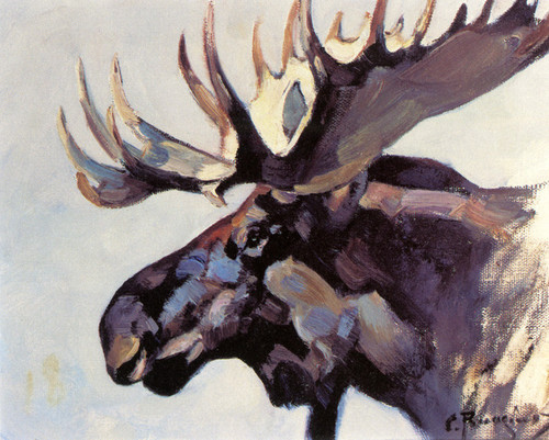 art prints of moose head by carl rungius. Black Bedroom Furniture Sets. Home Design Ideas