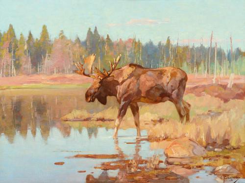 Art Prints of Moose in Marshland by Carl Rungius