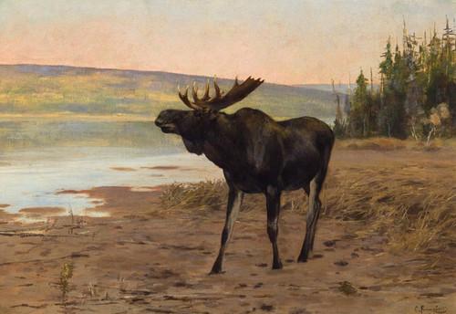 Art Prints of Moose near Banff by Carl Rungius