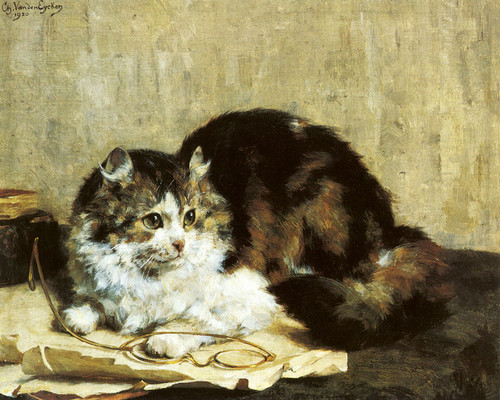 Art Prints of A Tabby Cat by Charles Van den Eycken