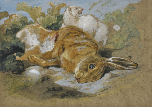 Art Prints of A Ferret and Dead Hare by Edwin Henry Landseer