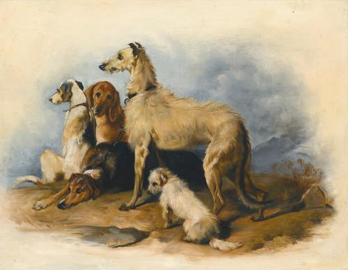 Art Prints of Highland Hounds by Edwin Henry Landseer