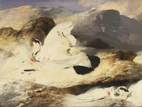 Art Prints of Ptarmigan in a Landscape by Edwin Henry Landseer