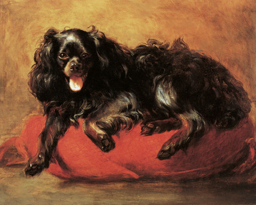 Art Prints of King Charles Spaniel on a Cushion by Edwin Henry Landseer
