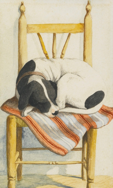 Art Prints of Sleeping Dog, English School