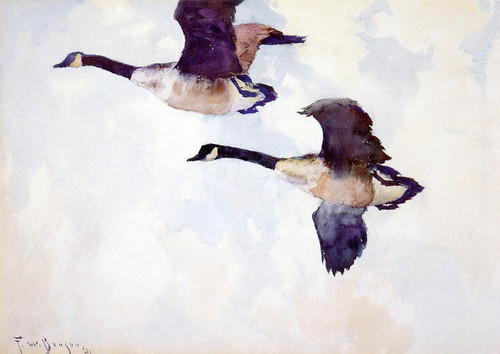 Art Prints of Geese by Frank Weston Benson