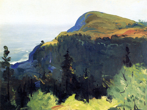 Art Prints of  Art Prints of Hill and Valley by George Bellows