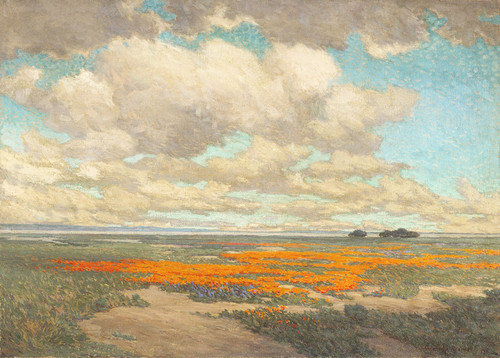Art Prints of A Field of California Poppies by Granville Redmond
