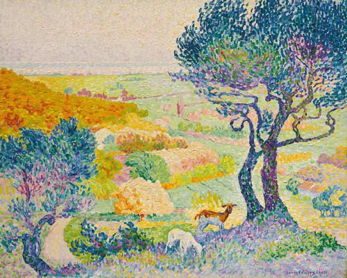 Art Prints of Plains, Bormes by Henri-Edmond Cross