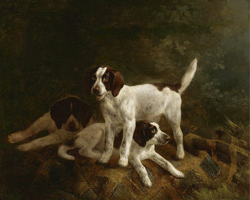 Art Prints of Playtime for Puppies by Henriette Ronner Knip