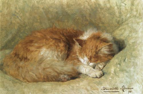 Art Prints of A Sleeping Cat by Henriette Ronner Knip