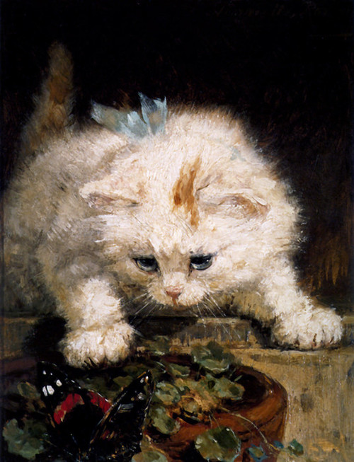 Art Prints of Solo Whiskers by Henriette Ronner Knip