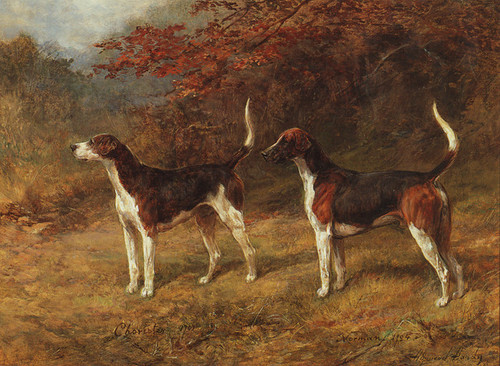 Art Prints of Choister and Norman, Foxhounds by Heywood Hardy