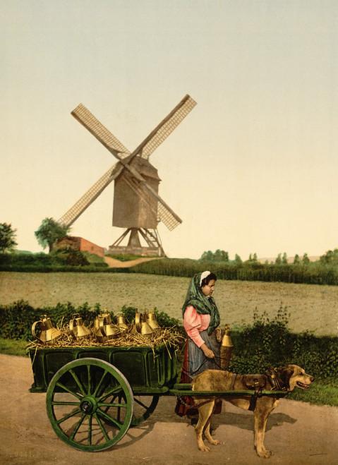 Art Prints of Milksellers, Brussels, Belgium (387186)