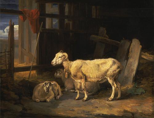 Art Prints of Heath Ewe and Lambs by James Ward
