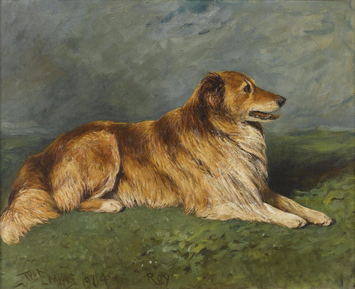 Art Prints of Roy, a Collie in a Landscape by John Emms