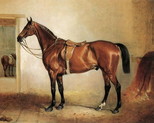 Art Prints of Bay Hunter in a Stable by John Ferneley
