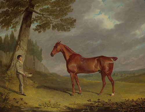 Art Prints of Chestnut Hunter with a Groom in a Landscape by John Frederick Herring