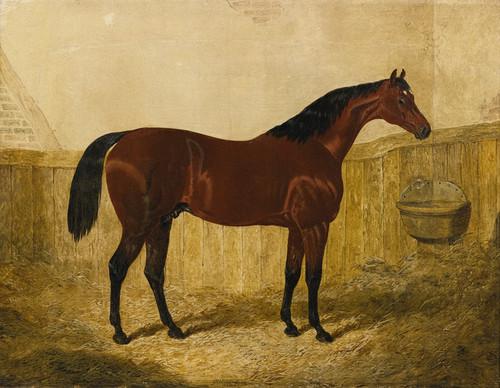 Art Prints of Emilius by John Frederick Herring