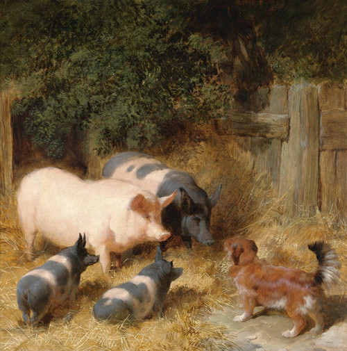 Art Prints of Farmyard Gossip by John Frederick Herring