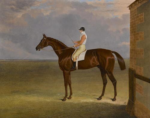 Art Prints of Mr. Sadler's Dangerous, 1833 Derby Winner by John Frederick Herring