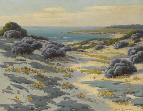 Art Prints of Bush Lupine, Poppies and Sand Dunes, Monterey by John Marshall Gamble