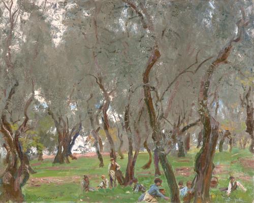 Art Prints of Olive Trees II by John Singer Sargent