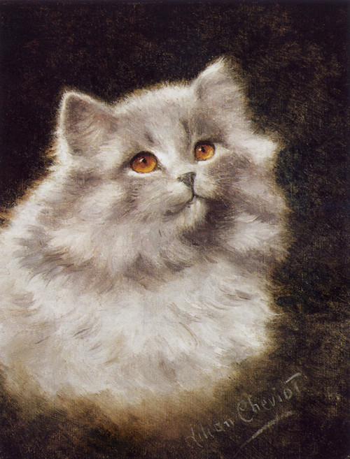 Art Prints of A White Persian Cat by Lilian Cheviot