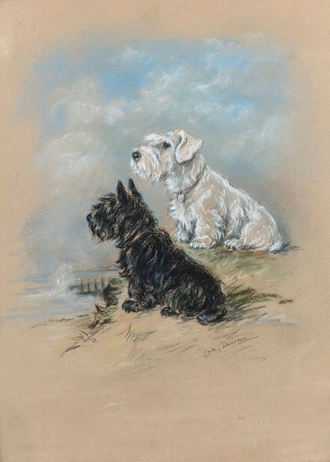 Art Prints Of Friends A Sealyham And Scottie By The Sea Lucy Dawson