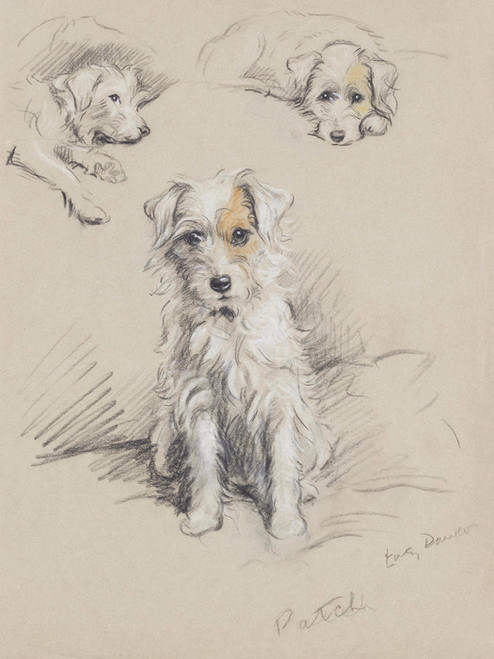 Art Prints of Patch, Wire Haired Terrier II by Lucy Dawson