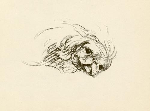 Art Prints of Pekingese 5 by Lucy Dawson