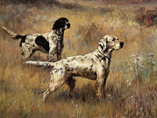 Art Prints of Setters in the Field by Percival Leonard Rosseau