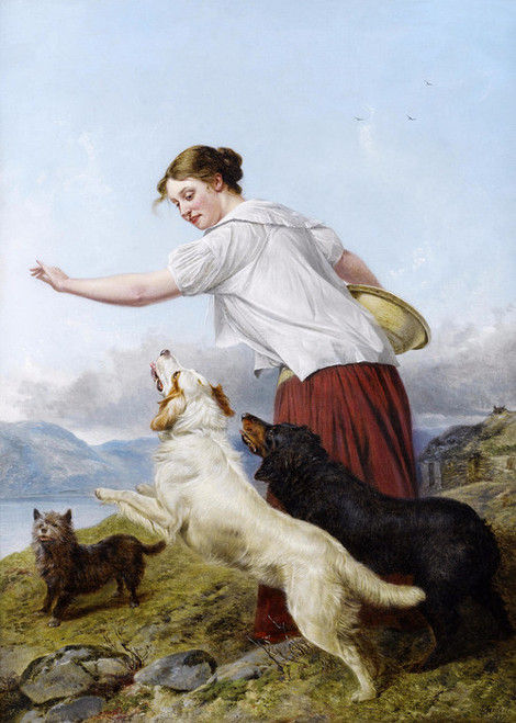 Art Prints of A Highland Walk by Richard Ansdell