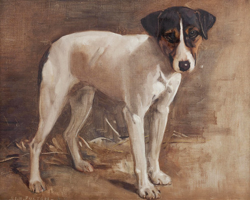 Art Prints of A Parsons Jack Russell, Study by Samuel Fulton