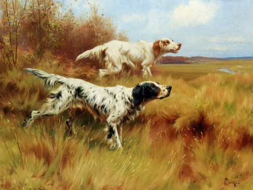 Art Prints of English Setters on Point by Thomas Blinks
