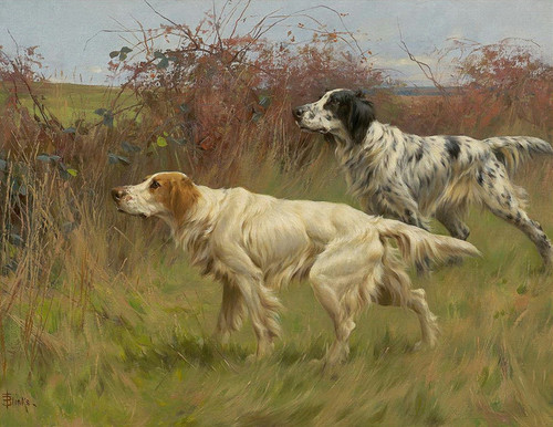 Art Prints of Setters by Thomas Blinks