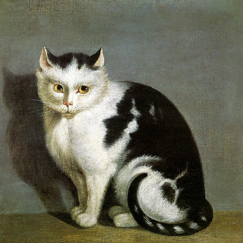 Art Prints of A Favourite Cat by an Unknown Artist