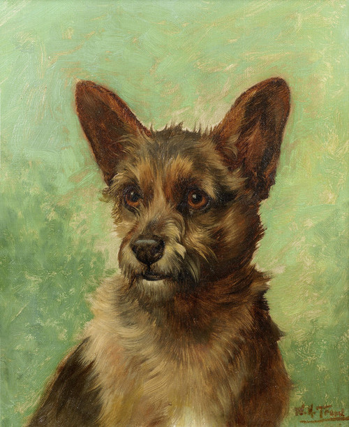 Art Prints of Head of a Terrier by William Henry Hamilton Trood