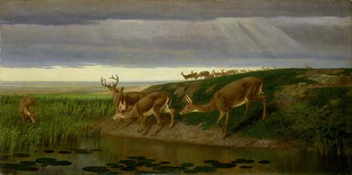 Art Prints of Deer on the Prairie by William Holbrook Beard