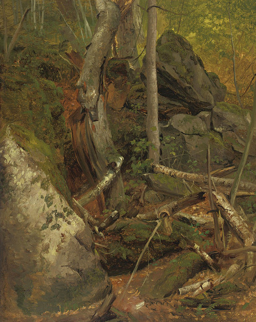Art Prints of Deep in the Forest by William Holbrook Beard
